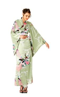 Green Kimono Dress