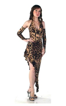 Leopard Salsa Dress