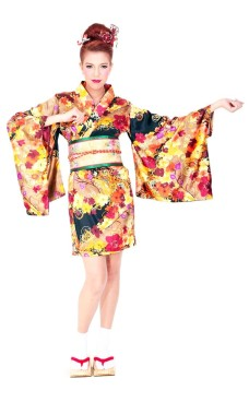 Oriental Kimono Dress