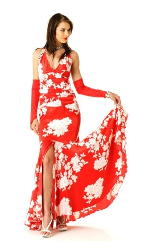 Red Salsa Dress Long Dresses