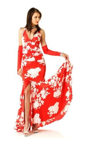 Red Salsa Dress Long Dresses