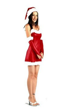 Santa Girl Dress Christmas Dresses
