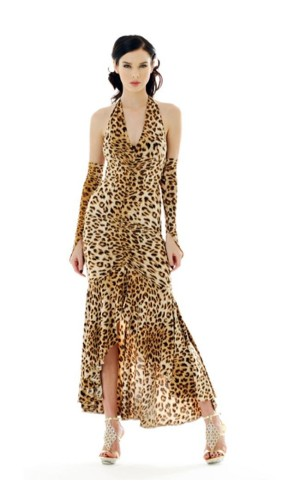 Sexy Leopard Dress Long Dresses