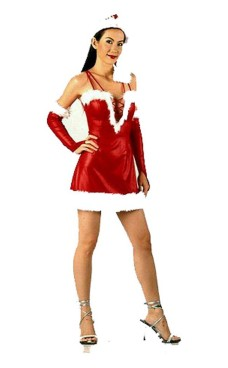 Sexy Short Santa Dress Christmas Dresses
